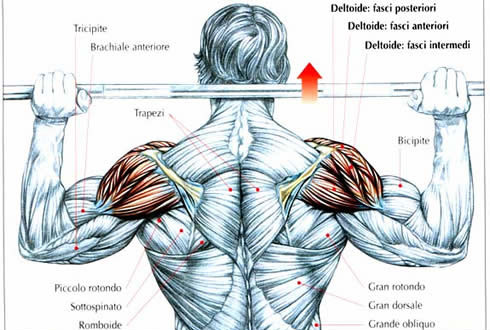 Allenamento e dolori alle spalle
