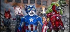 Marvel o Natura? Il superpotere nel mondo animale