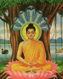 L-Siddharta2
