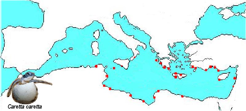 ambiente italiano