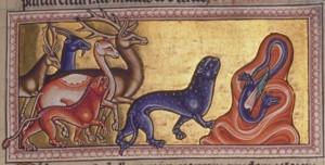 evoluzionismo nel medioevo