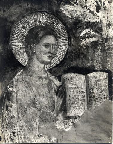 Donnaregina
