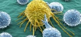 Immunoterapia: un'altra arma contro il cancro