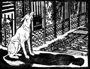 cuore di cane ombra