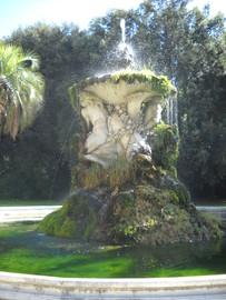 Bosco di Capodimonte