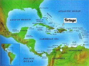 Tortuga America Centrale