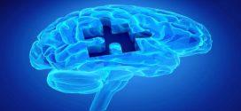 Popper ed Eccles: il rapporto tra l'Io e il suo cervello