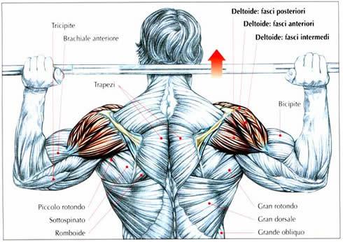dolori alle spalle