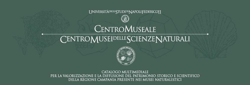 Il Centro Musei delle Scienze Naturali e Fisiche