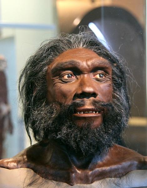 Homo heidelbergensis: artefice delle impronte sul Roccamonfina