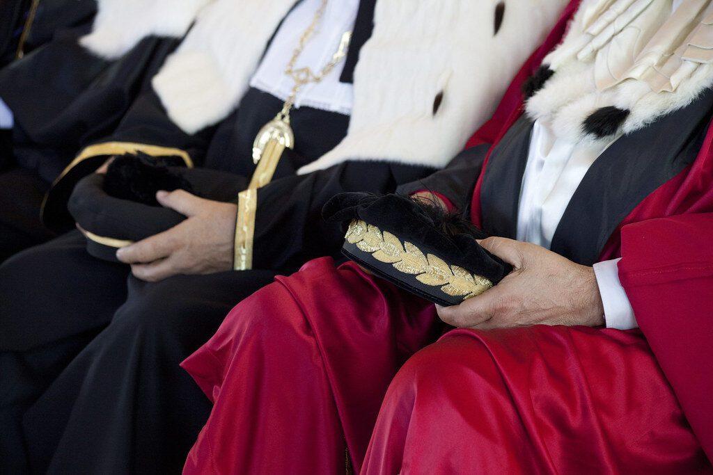 diritto costituzionale pubblico